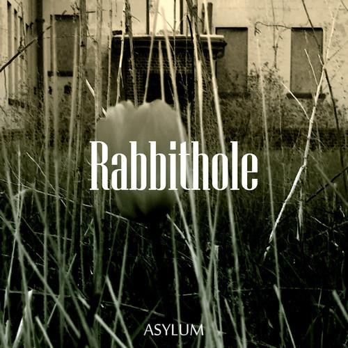 Rabbithole500x500